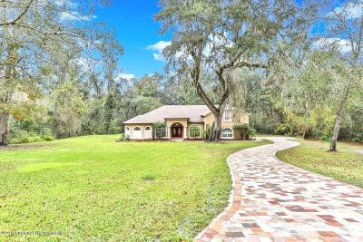 Brooksville Single Family Home For Sale: 27057 Redfox Drive