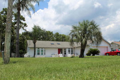 Spring Hill Single Family Home For Sale: 3426 Ambassador Avenue