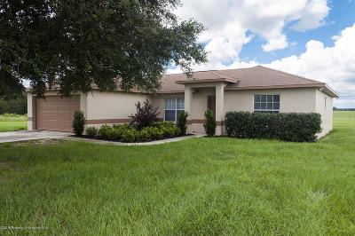 Floral City Single Family Home For Sale: 13474 S Pleasant Grove Road
