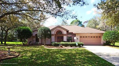 Spring Hill Single Family Home For Sale: 4506 Rachel Boulevard