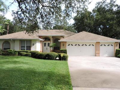 Spring Hill Single Family Home For Sale: 4451 Rachel Boulevard