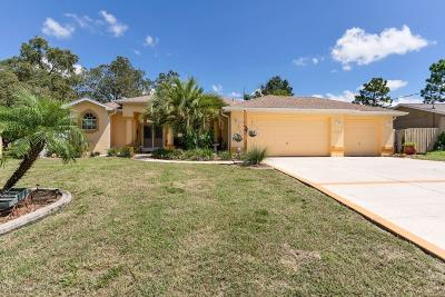 Spring Hill Single Family Home For Sale: 14352 Coronado Drive