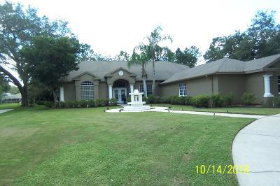 New Port Richey Single Family Home For Sale: 5116 Haltata Court