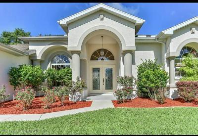 Brooksville Single Family Home For Sale: 4289 Gevalia Drive