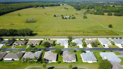 San Antonio Single Family Home For Sale: 10252 Moshie Lane