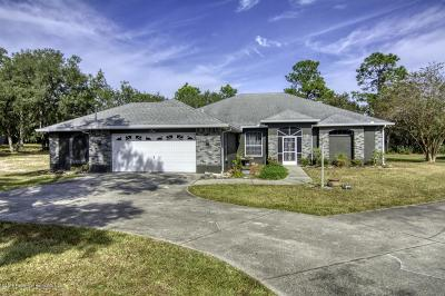 Weeki Wachee Single Family Home For Sale: 14352 Cinnaman Lane