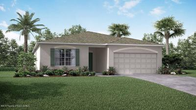 Spring Hill Single Family Home For Sale: 11030 Captain Drive