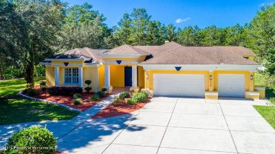 Weeki Wachee Single Family Home For Sale: 9465 Bearwalk Path