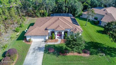 Homosassa Single Family Home For Sale: 12 S Paw Paw Court