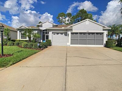 Hudson Single Family Home For Sale: 11749 Wayside Willow Court