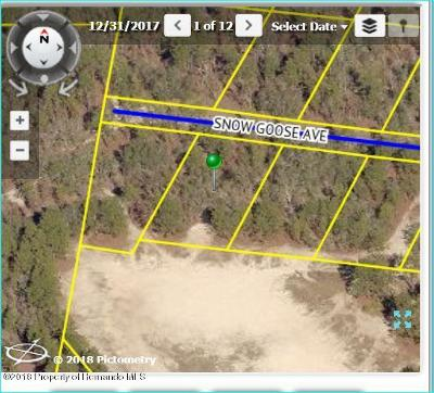 Brooksville Residential Lots & Land For Sale: Snow Goose Avenue #7