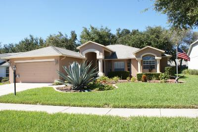 Hudson Single Family Home For Sale: 18537 Grand Club Drive