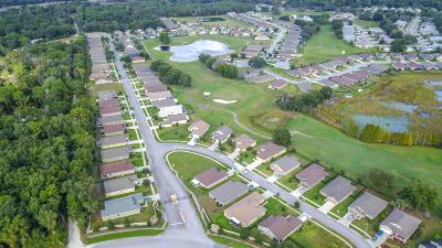 Hudson Single Family Home For Sale: 13241 Meadow Golf Avenue