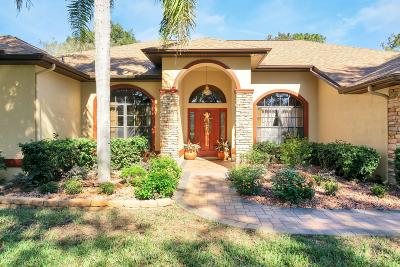 Spring Hill Single Family Home For Sale: 4467 Rachel Boulevard