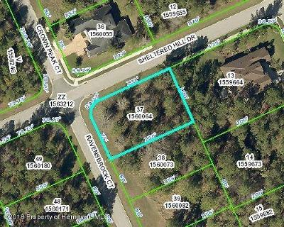 Brooksville Residential Lots & Land For Sale: Ravensbrook Court