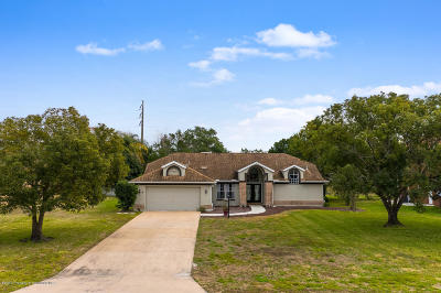 Spring Hill Single Family Home For Sale: 1498 Brigadier Drive