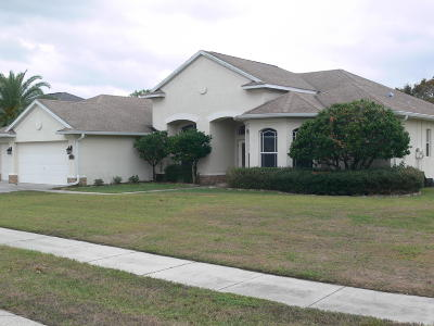 Spring Hill Single Family Home For Sale: 13468 Princewood Court