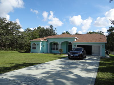 Weeki Wachee Single Family Home For Sale: 12114 Murre Avenue