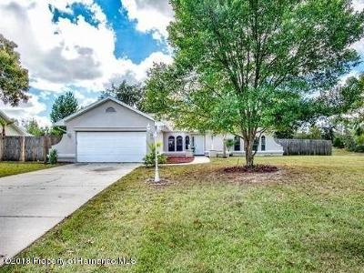 Spring Hill Single Family Home For Sale: 13182 Amber Woods Street