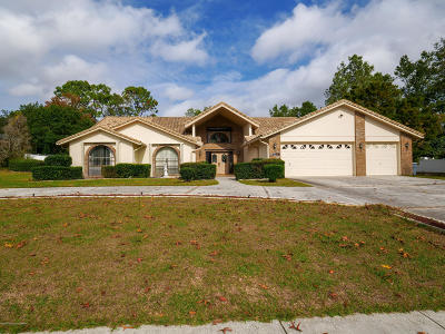 Spring Hill Single Family Home For Sale: 13473 Bruni Drive