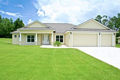 Spring Hill Single Family Home For Sale: 13249 Jessica Drive