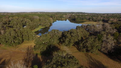 Brooksville Single Family Home For Sale: 19131 Barnett Road