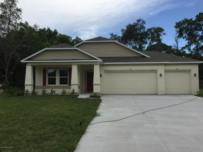 Spring Hill Single Family Home For Sale: 2273 Evangelina Avenue
