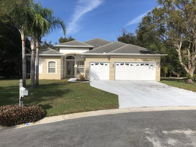 Spring Hill Single Family Home For Sale: 5145 Chameleon Court