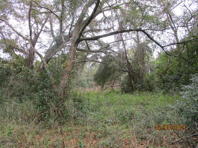 Spring Hill(Pasco) Residential Lots & Land For Sale: Kuka Lane