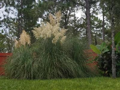 Weeki Wachee Single Family Home For Sale: 7344 Mandrake Road