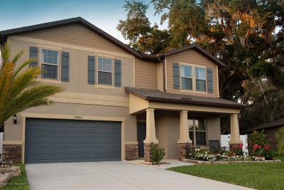 Brooksville Single Family Home For Sale: 15561 Stone House Drive
