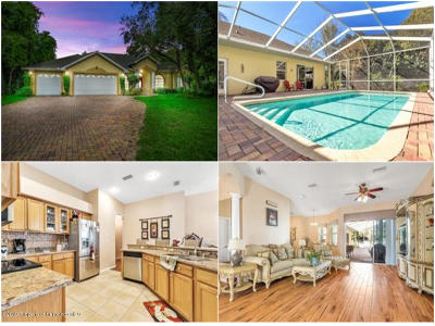 New Port Richey Single Family Home For Sale: 11645 Parable Court