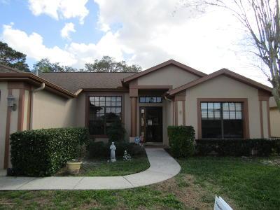 Hudson Single Family Home For Sale: 13607 Pimberton Drive #4