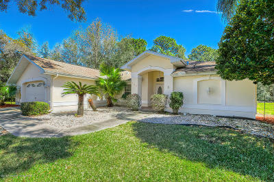 Hernando County Single Family Home For Sale: 156 Minerva Place