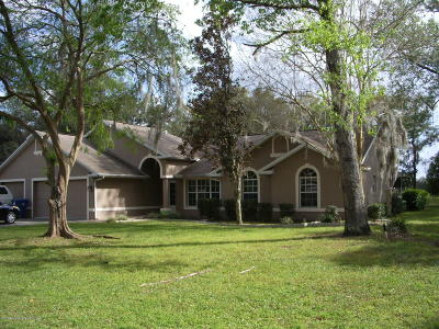 Spring Hill Single Family Home For Sale: 12294 Genter Drive