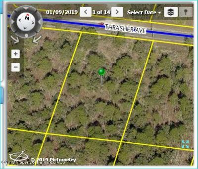 Brooksville Residential Lots & Land For Sale: 10394 Thrasher Avenue