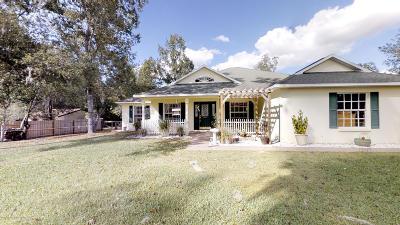 Brooksville Single Family Home For Sale: 10361 Magilligan Drive
