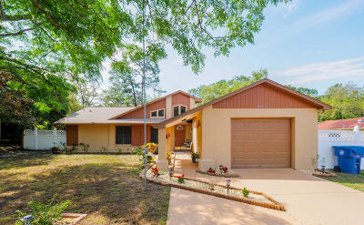 Spring Hill Single Family Home Active - Under Contract: 8076 Philatelic Drive