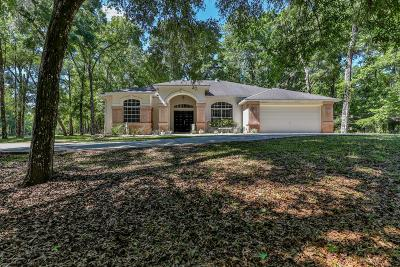 Brooksville Single Family Home For Sale: 11031 Nottingham Forest Drive