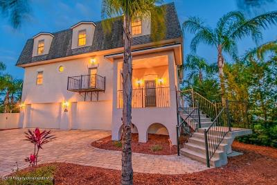 Hernando Beach Single Family Home For Sale: 4407 Flexer Drive
