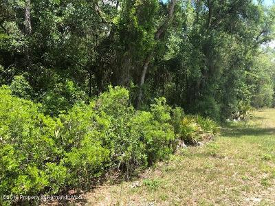 Homosassa Residential Lots & Land For Sale: 3317 S Lee Way
