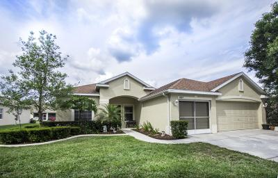 Spring Hill(Pasco) Single Family Home For Sale: 16807 Crested Angus Lane