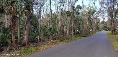 Homosassa Residential Lots & Land For Sale: 10490 W Main Street