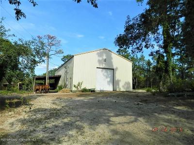 Weeki Wachee Single Family Home For Sale: 12214 Thrasher Avenue