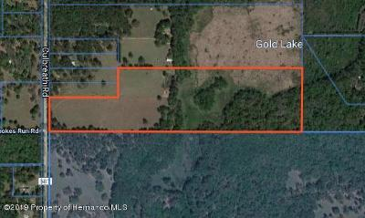 Brooksville Residential Lots & Land For Sale: Culbreath Road