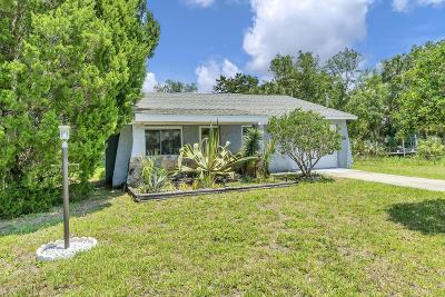 Hernando Beach Single Family Home For Sale: 4123 Pine Dale Court