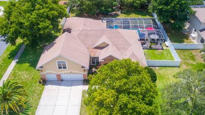 Spring Hill Single Family Home For Sale: 425 Romine Court