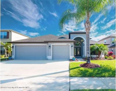 Wesley Chapel Single Family Home For Sale: 4808 Diamonds Palm Loop