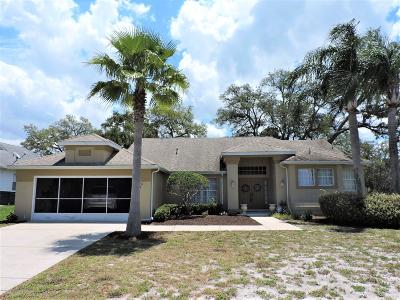 Spring Hill Single Family Home For Sale: 4234 Stratford Court