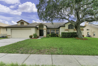 Spring Hill Single Family Home For Sale: 1383 Overland Drive